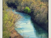 Springtime on the Mulberry River