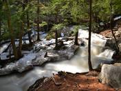 The brook / Le ruisseau