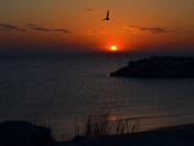Sunrise 4-17-15