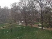 IUP April snow