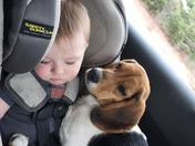 A baby & his Puppy