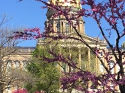Our beautiful Capitol in the Spring