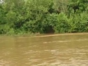 White River Flooding