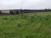Train derailed in Osceola, Iowa