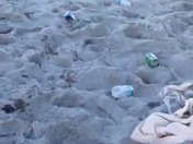 Dr Phillips high school students trash Patrick Air Force beach