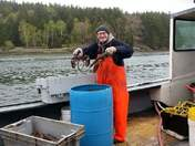 ww2 vet still lobstering at 91