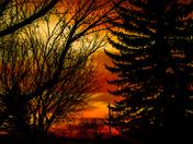 Regina Sunrise