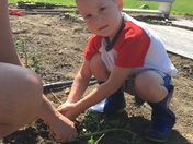 helping mom plant the garden