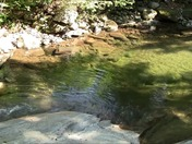 Most Beautiful Brook in VT