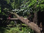 Post storm damage