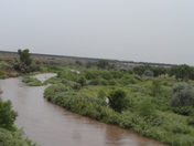 A picture over looking the Fort Sumner Pecos river