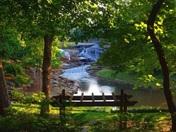 Reedy River Falls, 6/30/15