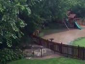 Flooding in lees summit