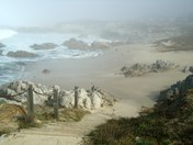 Asilomar Beach,Foggy morning