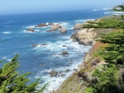 Garapatta Park,Monterey Bay,Ca.