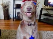 Happy 4th!!