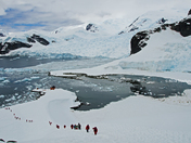 Antarctic Explorers