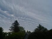 Scalloped Sky