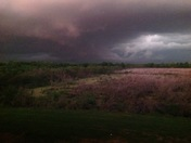 From Patricia McChargue in Theriot La