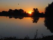 Sunrise of a Pond