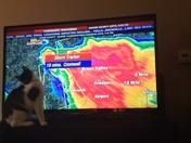 Darn that weather cursor!