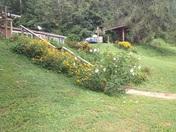 Taming the hillside
