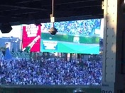 Anthony Rizzo jumps into stands video
