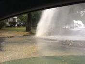 Walnut Street geyser!