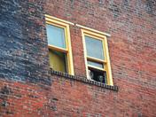 Window Life