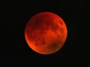Blood/Supermoon