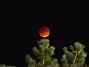 Blood Moon ornament