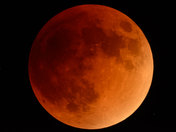 Blood Moon On the Rise