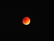 Mega Blood Moon