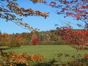 October walk color