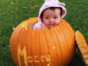 Macey-o-lantern