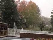 THE SNOW!