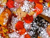 Hail…. the season
