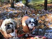 Soencer and Bella at the Basin