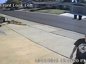 Roseville mail thief caught on camera.