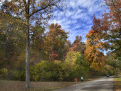 Iroquois Park fall color