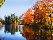 Fall in NE is the BEST!