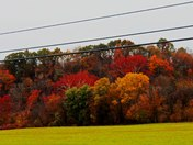 These Photo's Were Taken In Bradfordsville, In Marion Co. ky