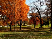 Hanscom Park at Lunch time today