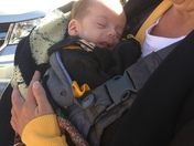 10 week old infant steeler fan needs a ticket