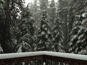 Big Trees Village snow