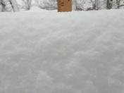 snowfall 10in