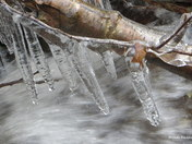Icicles on the Waterbury Trail