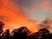 November 24 Sky
