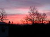 Thanksgiving Sunrise
