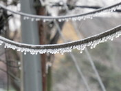 Thanksgiving Ice Storm 2015